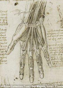 Leonardo-Da-Vinci-hand